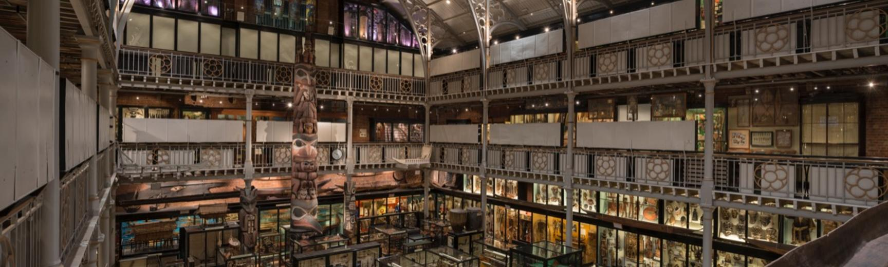 overview of the Pitt Rivers museum