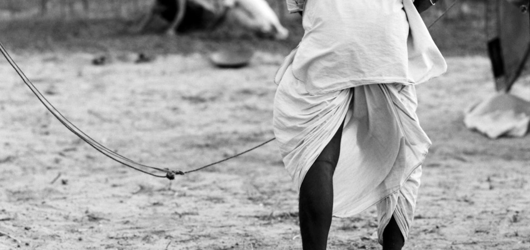 Dhoti garment