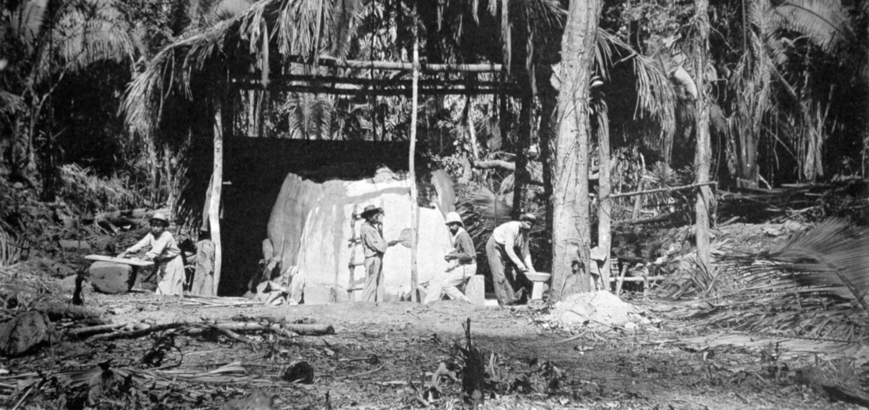 'Moulding the Great Turtle, 1883.' This photograph, which was published in Alfred Maudslay's Archaeology, shows his assistant Lorenzo Giuntini working in the hot and humid conditions of Quirigua, preparing a piece-mould of Zoomorph P. The plaster of Paris
