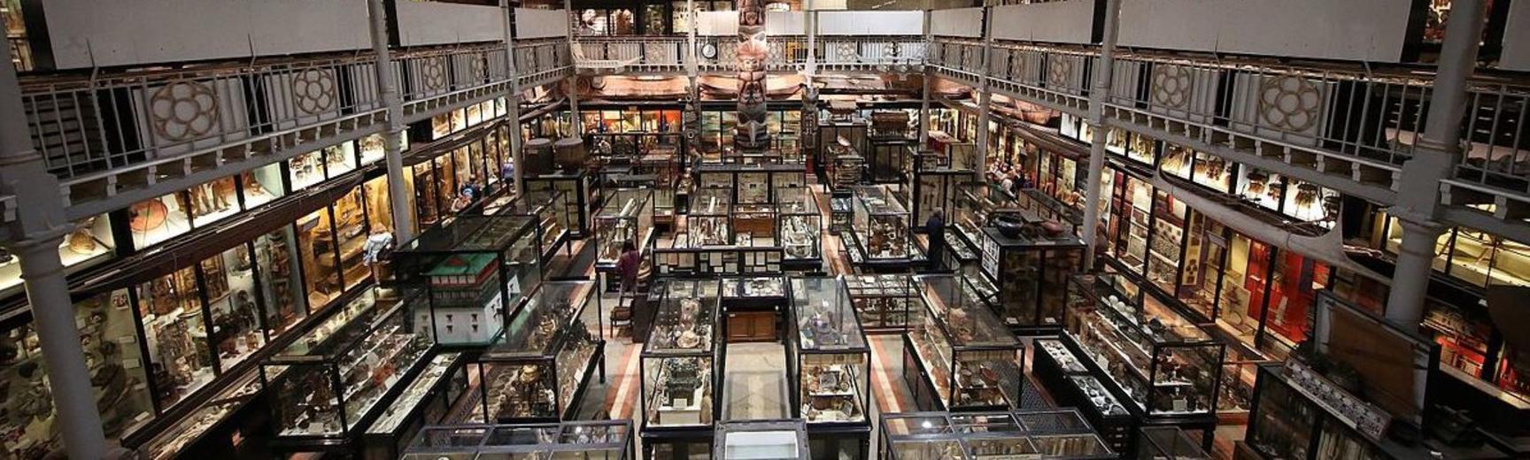 interior of pitt rivers museum 2015 flipped and no tde