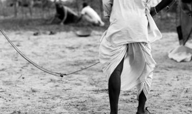 Dhoti garment. Rajasthan, India. Photograph by Roger Chapman. 2011. (Copyright Roger Chapman)
