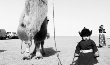 Camel and boy. Outer Mongolia. Photograph by Roger Chapman. 2013. (Copyright Roger Chapman)