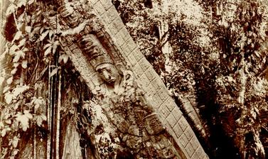 The ruins at Quirigua have been photographed many times since Alfred Maudslay's pioneering work in the late nineteenth century, notably by several American archaeological expeditions which took place during the course of the last century, as well as by a