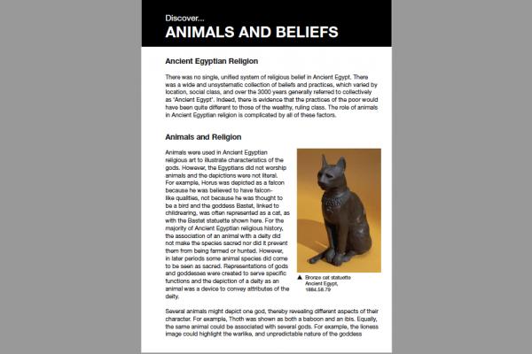 animals and beliefs
