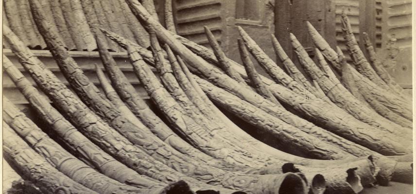 Carved ivory in Benin City, 1897 [2019.32.2.45]