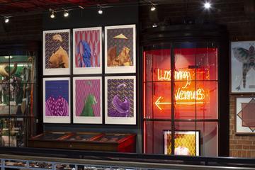 'The Prints' by Matt Smith, display comprising part of his exhibition Losing Venus
